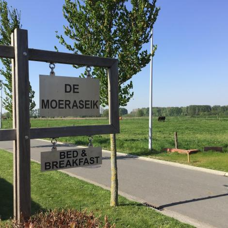 B&B De Moeraseik, Zele, Bed and Breakfast, B&B
